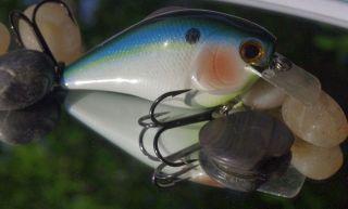 Pearl Threadfin Shad