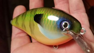 Strike King 8.0 Square Bill in a  Blue Gill