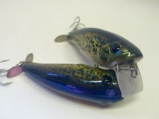 Holographic Foiled Black Crappie
