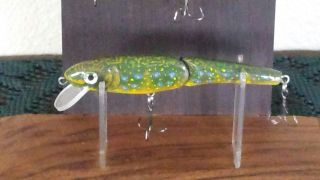 trout swimmer