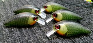Spotted baits.