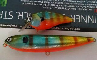 Pair of gills