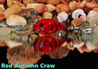 Red Autumn Craw