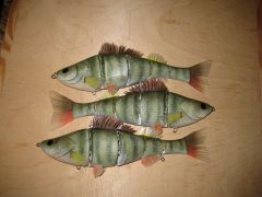 redfin perch