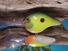 Tropical Shad
