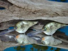 Crappies (Copy)