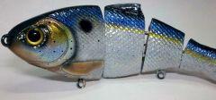 Bullshad threadfin