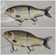 8.5 inches gizzard shad glider. final version