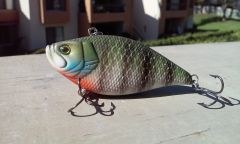 Bluegill Color on the lipless Crankbait
