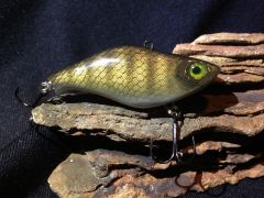 Walleye Lipless Crankbait
