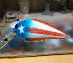American shad