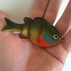 Blue Gill Jointed Bait