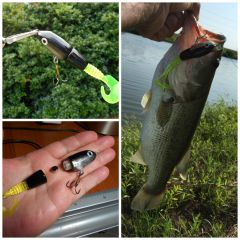 Prototype soft tail vibrating topwater lure
