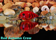 Red Autumn Craw