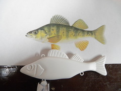 large perch lipless