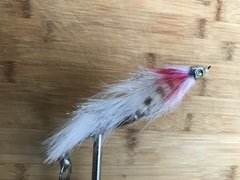 jointed predator fly