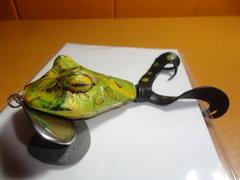JItterbug Frog.JPG