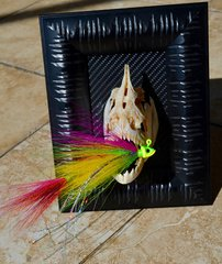 Peacock Bass Jig