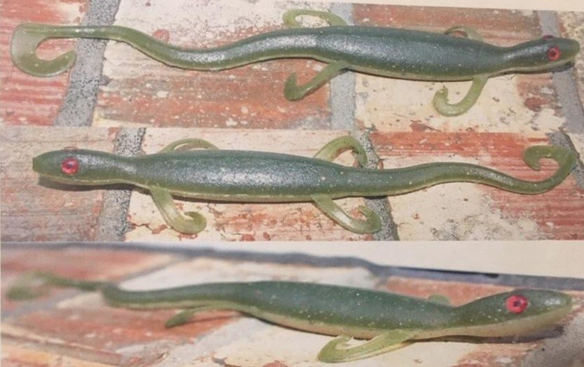 Lizard Collage .jpg
