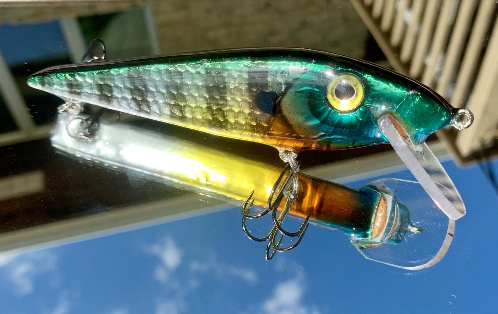 Foiled blue gill