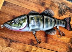 Gastonfish.jpg