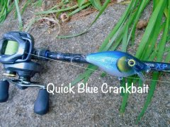 Quick blue crankbait