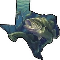 Lonestarbaitcompany