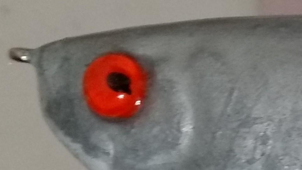 Eye Close-up.jpg