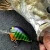 Crankbait With Blades - last post by Don-Art