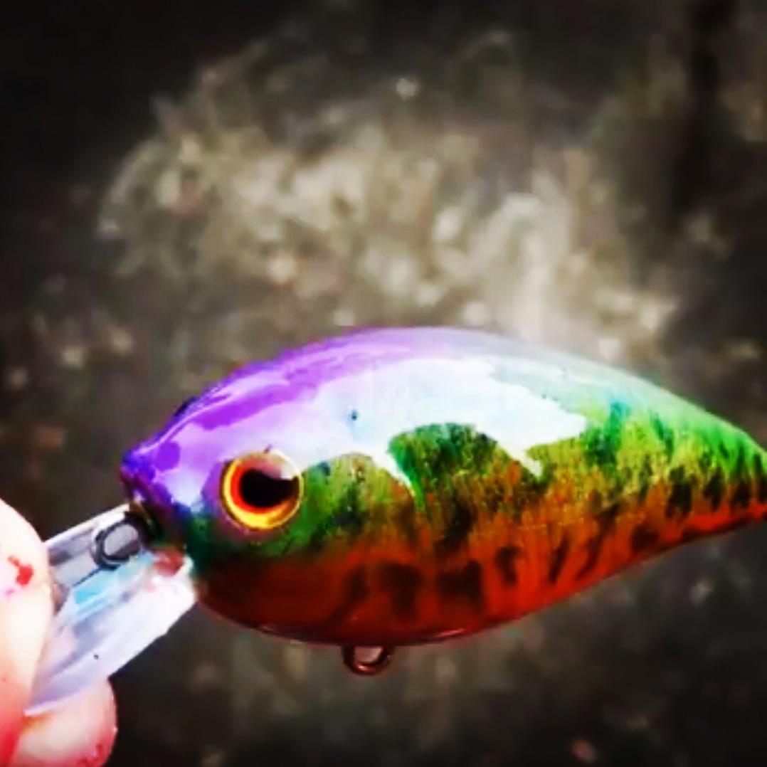 Rainbow Crappie - Hard Baits - TackleUnderground com