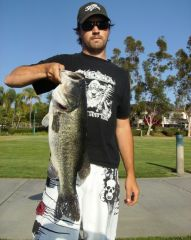 Another Giant Bucketmouth