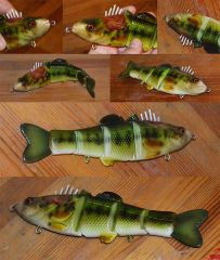 wounded bass