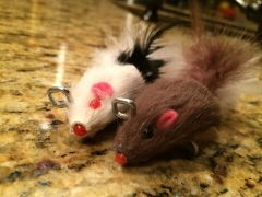 New And Improved Topwater Rat
