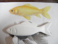 large goldfish lipless masters