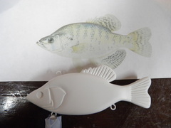 large crappie lipless