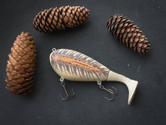 spruce cone paddle tail