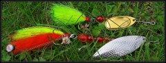 17966774_1413915171963616_1067516388634446278_o_crop - frame.jpg
