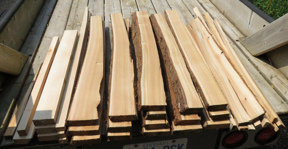Hard Bait Wood.jpg